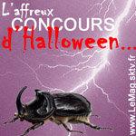 Résultats du concours LeMag.sktv.fr/Insectes comestibles…
