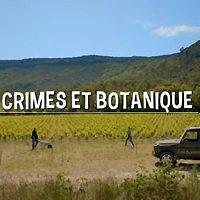 « Crimes et Botanique », l'adaptation française de « Rosemary & Thyme »…