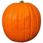 Déco Halloween : des bras et des jambes pour votre citrouille !