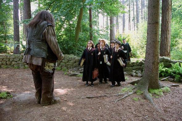 """Les Silhouettes photo Harry Potter : le """"Wow effect"""" de vos soirées à thème"""