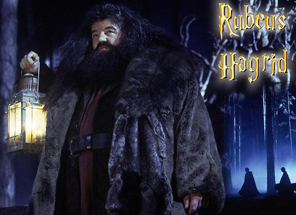 Silhouettes photo Harry Potter : le géant Rubeus Hagrid