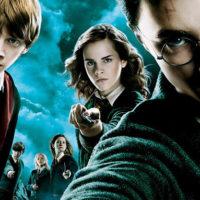 Idée déco Silhouettes photo Harry Potter : mon incroyable anniversaire !