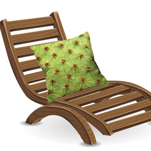 Coussin cactus en situation