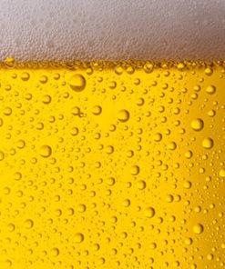 Tarif Bières : gros plan bière