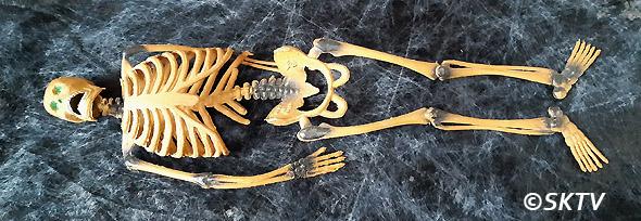 Challenge Halloween 2020 : squelette Oscar allongé sur le plan de travail