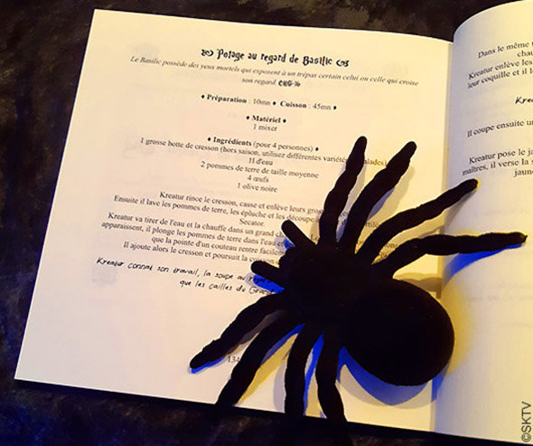 Soupe verte à l'oeil de basilic : le manuel de recettes ouvert et une grosse araignée